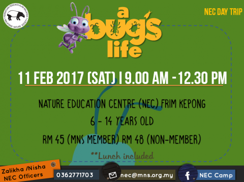 NEC Day Trip : A Bug's Life!