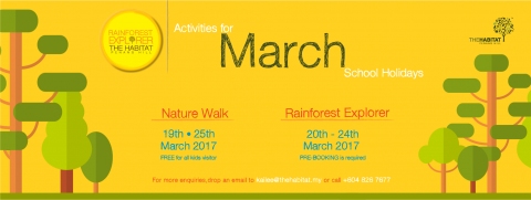 Rainforest Explorer for March School Holidays