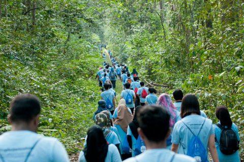 Save Our Rainforest Race 2017