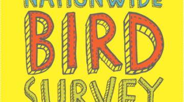 2nd MY Garden Birdwatch Bird Walk 2017