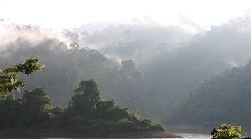 Protect Ulu Muda: Media Statement by Friends of Ulu Muda