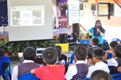 16th June 2017, SK Tidung Tabin Ms. Noorzeelah from HUTAn-KOCP delivering her talk about orang-utan in Sabah.