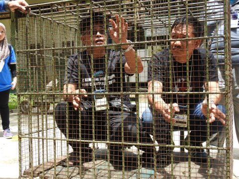 Participants asked to stay in small cage for them to experience what it feels like to be badly treated by people who visits displayed animals
