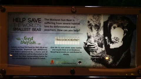 Signboard about sun bears at the shopping centre