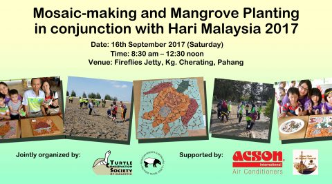 Mosaic and Mangrove Planting Activity
