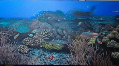 Coral Propagation Program