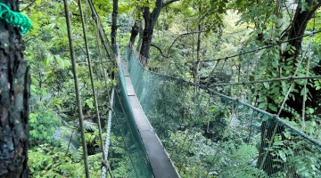 Trip: Sungai Keroh, FRIM