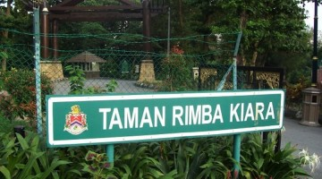 Trip: Bukit Kiara Walk (Flora Group)