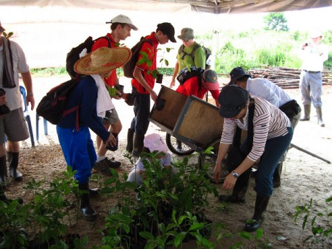 Monthly tree planting at North Selangor Peat Swamp Forest