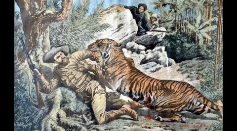 Environmental Seminar: Who is the Predator?: The French and Tigers in Indochina