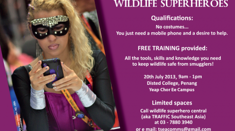 Wildlife Superheroes Workshop