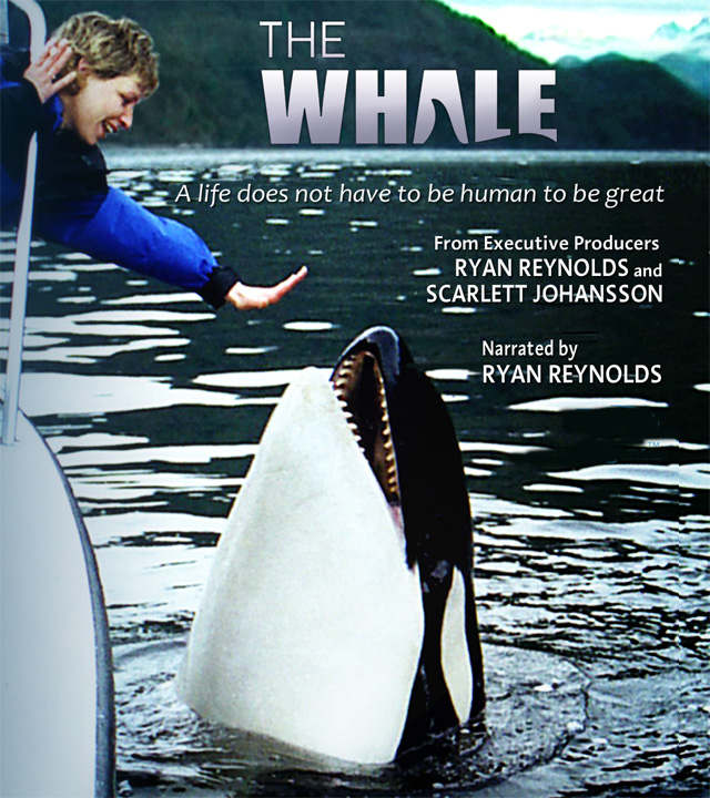 TheWhaleMountainsideFilms