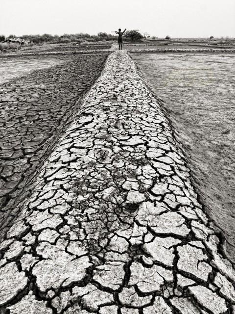 Barren land - Image source: http://www.abhijitsplanet.com/pratibimb/index.php?showimage=185