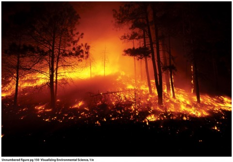 Climate Change and Environmental Degradation - Image source: http://lyrfutures08.wordpress.com/2008/02/
