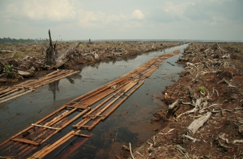 Climate Change and Environmental Degradation - Image source: http://en.wikipedia.org/wiki/Deforestation