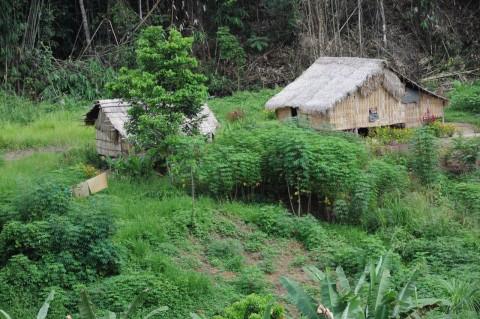 Orang Asli - Image source: http://peters365photos.wordpress.com/category/malaysia/page/3/