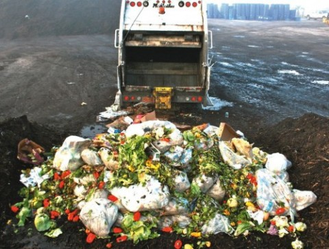Food waste – unbelievably wasteful