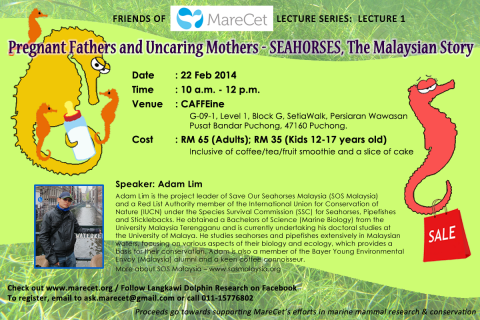 Friends of MareCet Lecture Series: Lecture 1 (SEAHORSES)