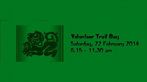 Volunteer Trail Day – Building T4 (3rd session)