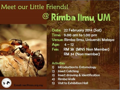 Meet our little friends! @Rimba Ilmu, UM