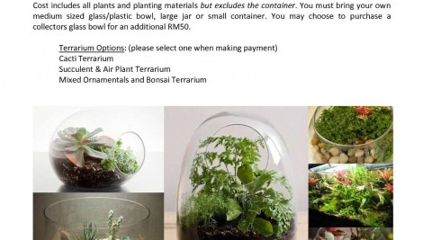 Course: how to make a Terrarium