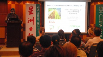 What's Happening in Malaysia #2: Organic Farming (Part One)