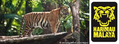VOLUNTEERS NEEDED! Tiger Roadshow @ Shah Alam Stadium (registration closes 24 Mar, 12pm)