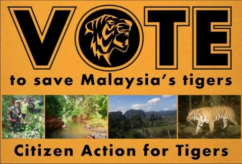 Vote now to save Tigers!