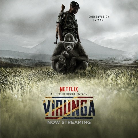 MESYM Documentary Night #23: Virunga