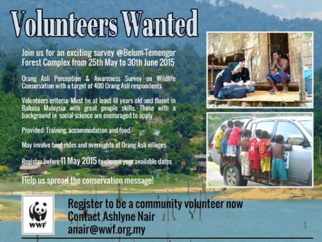 wwf-volunteer