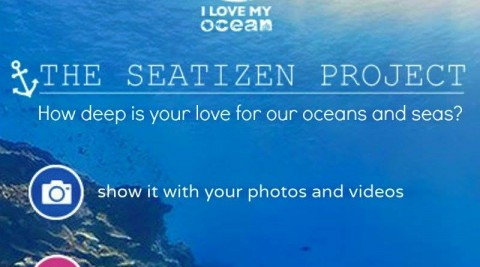 I LOVE MY OCEAN : Looking for Photos & Videos