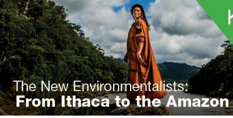 The New Environmentalist – A National Film Screening Premiere at the 8th Kuala Lumpur Eco Film Festival, 18 th October 2015