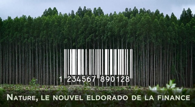 video-nature-le-nouvel-eldorado-de-la-finance_pf