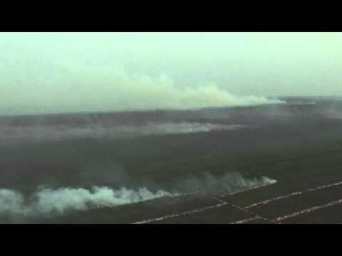 Dramatic footage of Indonesia's devastating forest fires