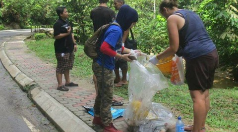 MNS Green Living SIG New Year's Day Forest Cleanup and Tree Planting Session
