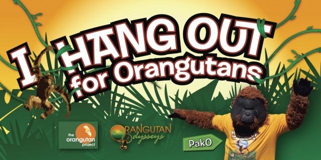 Hang Out For Orangutans - Banner 2016 [oo+top] 50pc PROOF