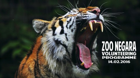 Zoo Negara 8 Hours Volunteer Program
