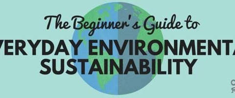 The Beginner's Guide to Everyday Environmental Sustainability