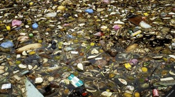 One in 10 Malaysian Rivers is Badly Polluted