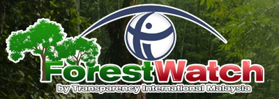 Forest Watch by Transparency International