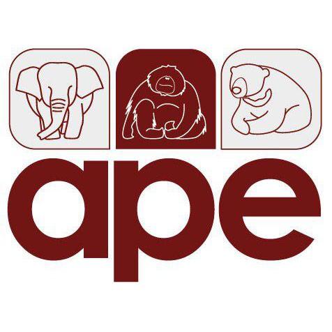 APE Malaysia