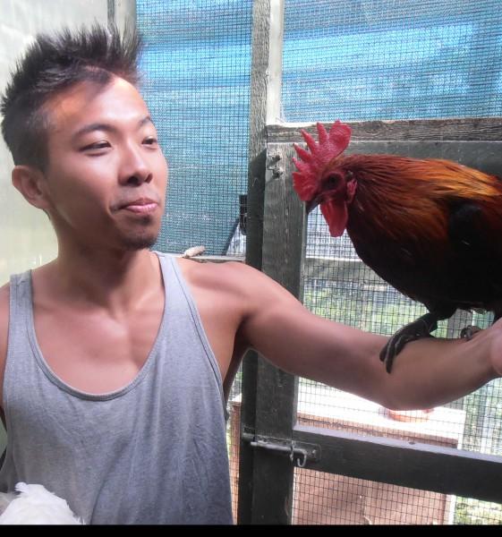 Cedric Tan