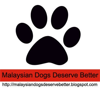 Malaysian Dogs Deserve Better
